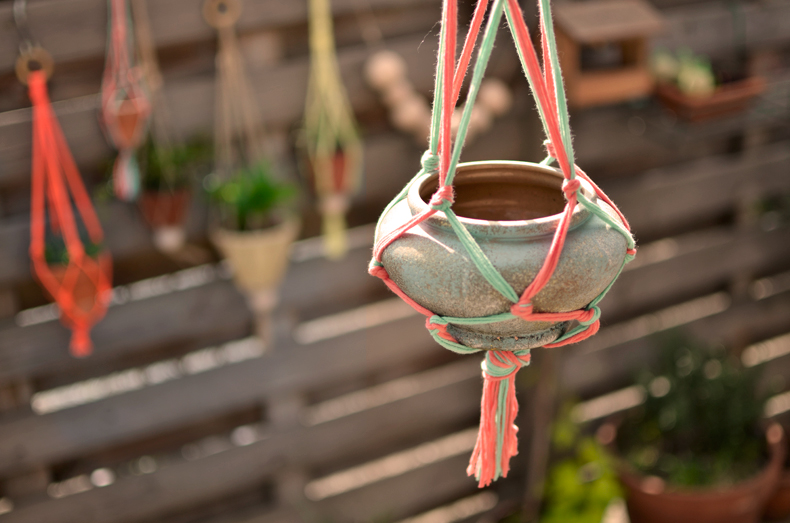 Diy Les Plantes Suspendues