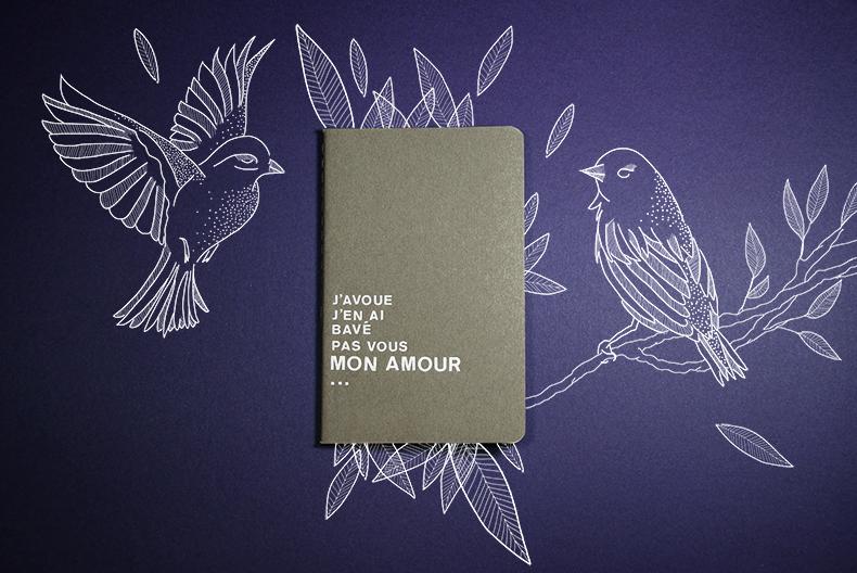 carnet-oiseaux-mamieboude
