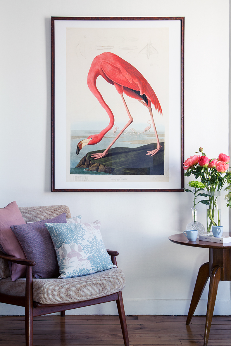 flamingo-mamieboude