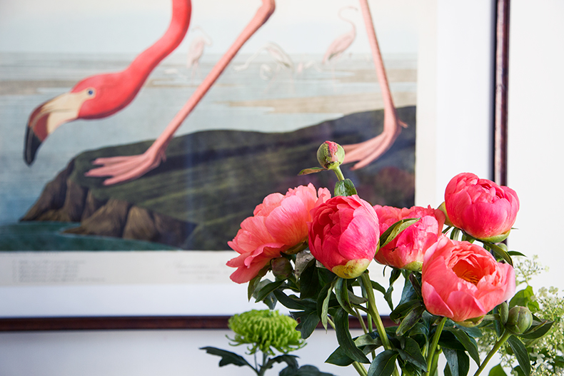 flamingo-mamieboude4