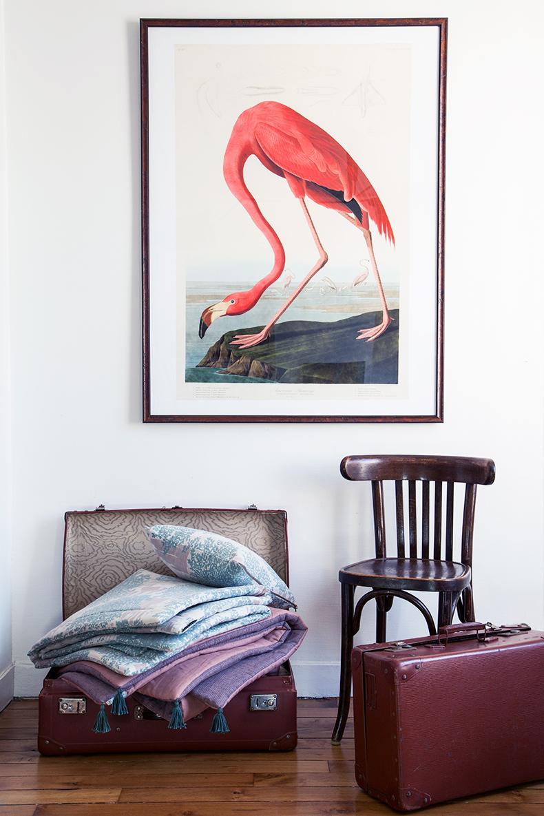 flamingo-mamieboude9