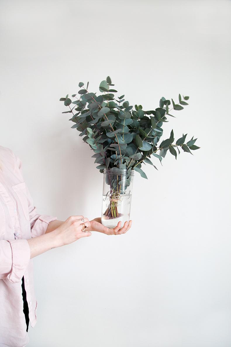 eucalyptus-home-mb4
