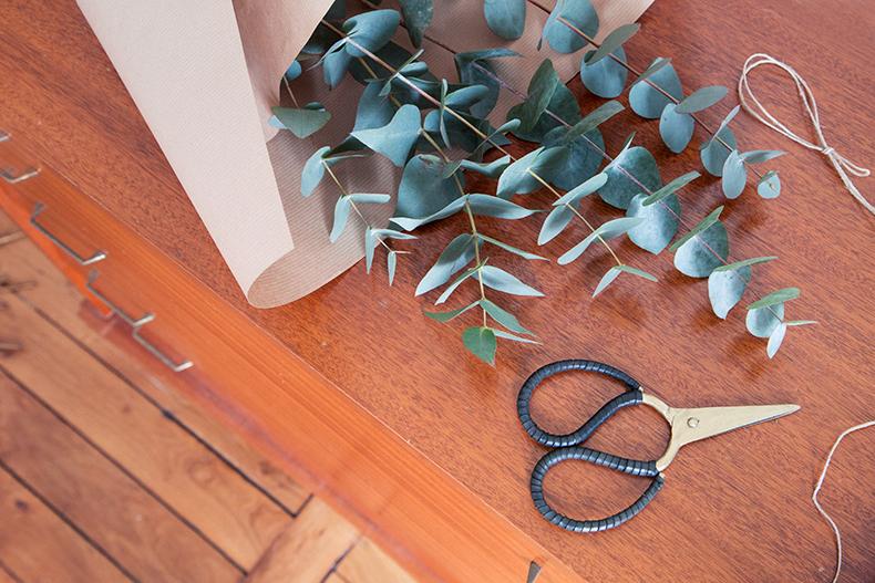 eucalyptus-home-mb6