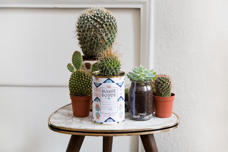 mamieboude-x-Ay-Cactus