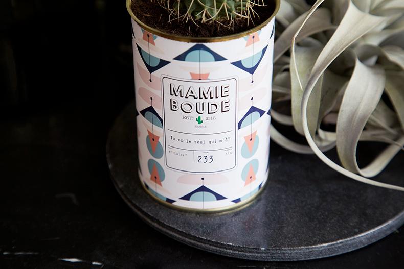 mamieboude-x-Ay-Cactus2