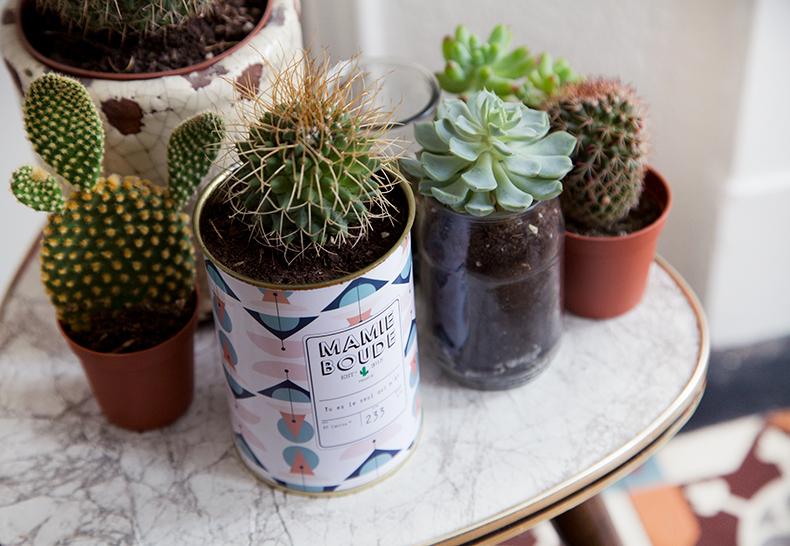 mamieboude-x-Ay-Cactus3