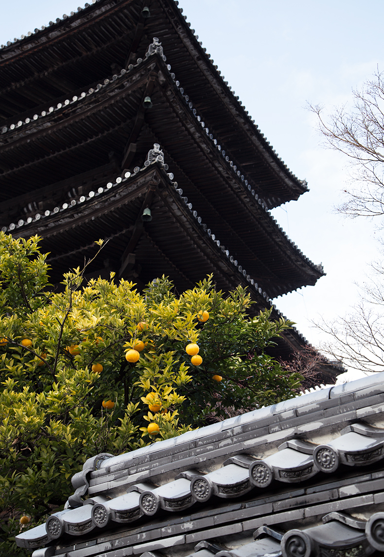 kyoto24-city-guide-mamie-boude